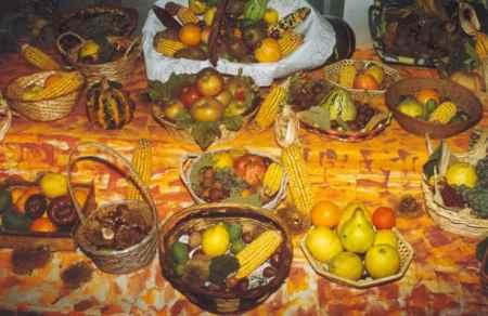 Froitas de Outono en Cedeira